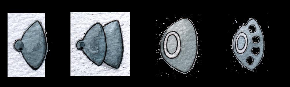 Schirmchenvarianten